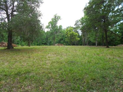 4064 SE 126th  Belleview, FL MLS# 438016