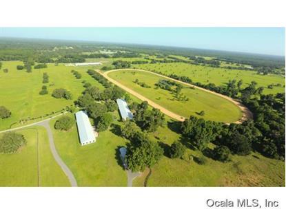 12511 S Highway 475  Ocala, FL MLS# 442003