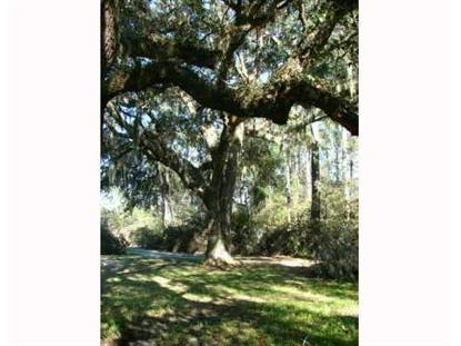 0 OGEECHEE Road Garden City, GA MLS# 118279