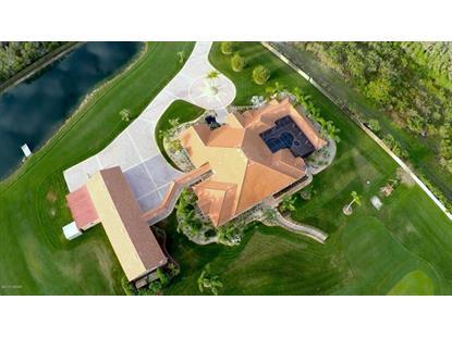 1465 Whispering Meadow Lane Osteen, FL MLS# 1000467