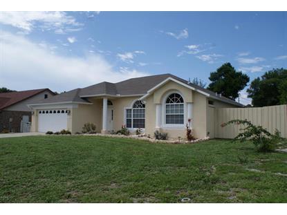 1180 SHERBROOK Drive Deltona, FL MLS# 1005345