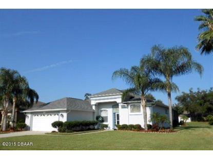 732 OAK WATER Lane Port Orange, FL MLS# 1006517