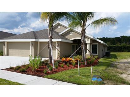 1429 COCONUT PALM  Port Orange, FL MLS# 1007115