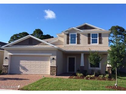 1215 CAP DIVILLE Avenue Port Orange, FL MLS# 1007446