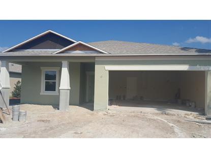 3881 DORSIERE Avenue Port Orange, FL MLS# 1007657