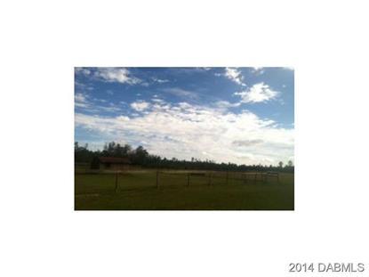 345 BLACK LAKE Road Osteen, FL MLS# 1008313