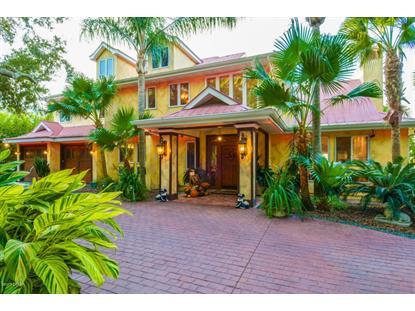 936 John Anderson Drive Ormond Beach, FL MLS# 1008370