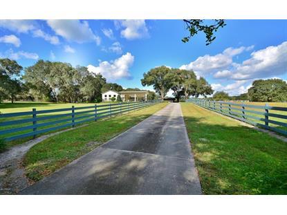 1485 MERCERS FERNERY Road Deland, FL MLS# 1009543