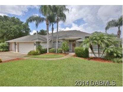 6399 Nika Ct  Port Orange, FL MLS# 560353