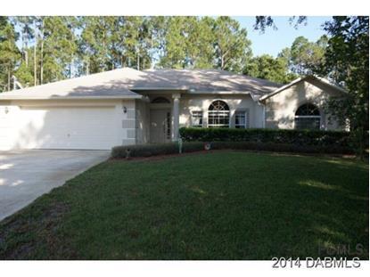 6 Sledding Place  Palm Coast, FL MLS# 564635