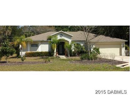 1 White Hawk Place Palm Coast, FL MLS# 570330