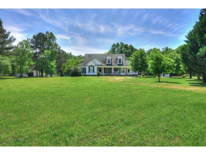 2785 Morris Farm Road  Appling, GA MLS# 386365
