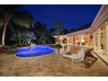 11600 Charisma Way Palm Beach Gardens, FL MLS# RX-10070424