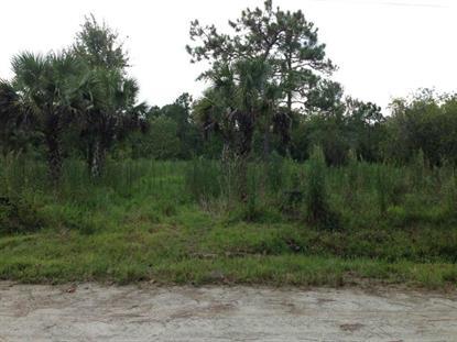 3670 Maple Ln, Okeechobee, FL 34972