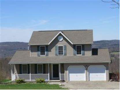 653 JACKSON HILL ROAD Greene, NY MLS# 193871