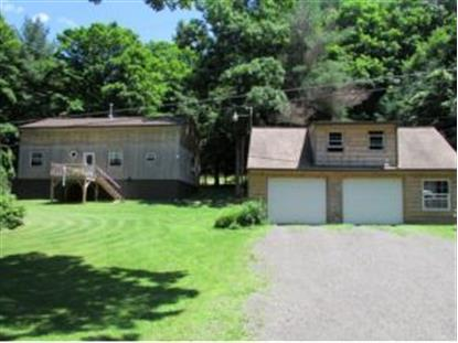 694 HOTCHKISS ROAD Greene, NY MLS# 194961