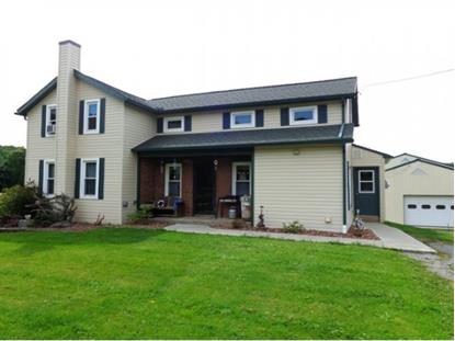 329 PALMITER ROAD Greene, NY MLS# 196030