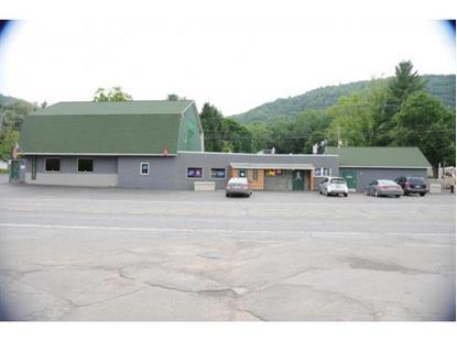 Real Estate for Sale, ListingId: 34657592, Hallstead,PA18822