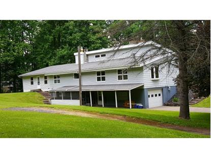 171 PALMER CURTIS Greene, NY MLS# 205183