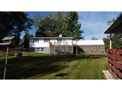 9825 COBB LAKE RD Jonesville, MI MLS# 31219641