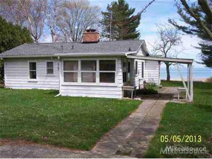 5355 WASHINGTON  Lexington, MI MLS# 4774828