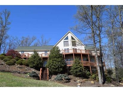 255 Chelaque Way Mooresburg, TN MLS# 555976