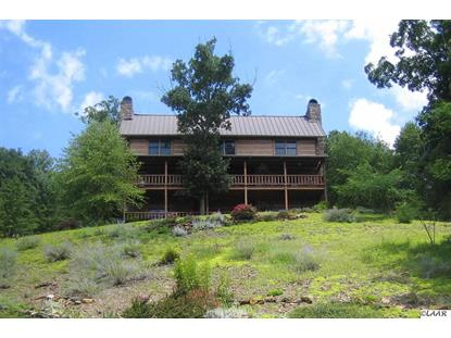 9084 Paradise View Dr Mooresburg, TN MLS# 558500