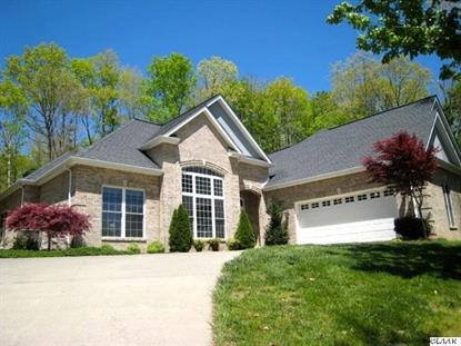 8011 Mountain Ridge Drive Mooresburg, TN MLS# 558683