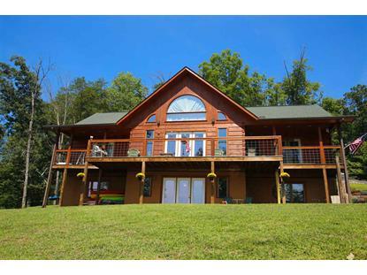 603 Lakeview Drive Mooresburg, TN MLS# 564289