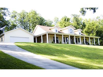 403 W Chelaque Way Mooresburg, TN MLS# 565337