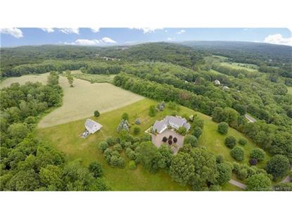 162 Middle Road Tpke  Woodbury, CT MLS# L10155743