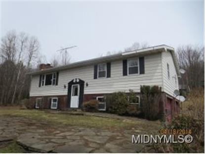 348 Norton Rd  Schenevus, NY MLS# 1403050