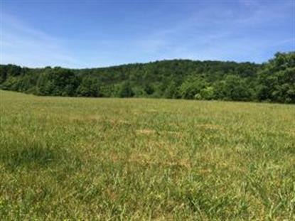 0 Country Ridge RD Bassett, VA MLS# 815442