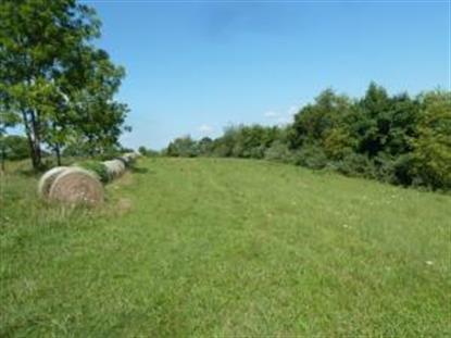 0 OAK FOREST RD Bassett, VA MLS# 815637
