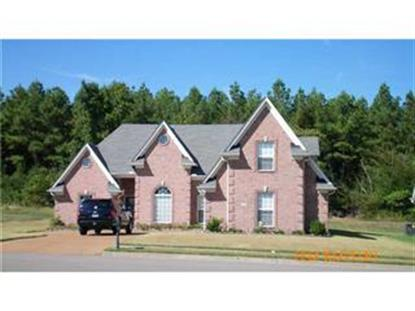 2362 ANSLEY PARK NORTH DRIVE, Southaven, MS