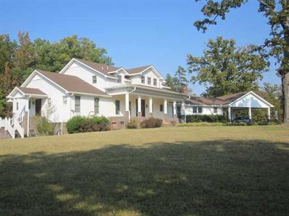 945 COUNTY HOME RD, Savannah, TN