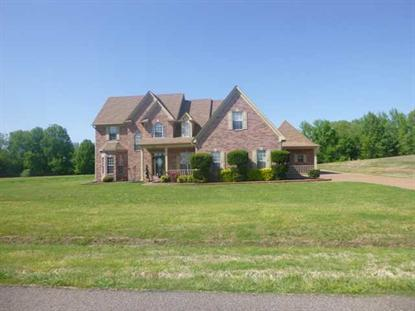 3630 EPPERSON WOOD DR, Millington, TN