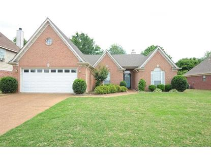 11205 IVY  Arlington, TN MLS# 9927305