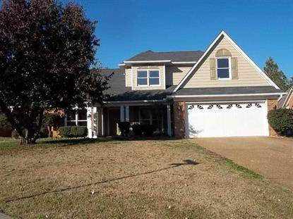 9004 FLETCHER PARK CIRCLE NORTH  Cordova, TN MLS# 9940405