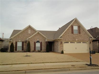 2738 OLD WELL COVE  Cordova, TN MLS# 9943349
