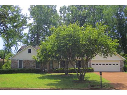 8039 BREEZY CREEK ROAD  Germantown, TN MLS# 9951169