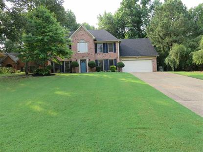 7765 WIDGEON LAKE COVE  Cordova, TN MLS# 9955590