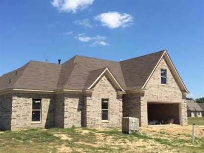 8350 WILD DUNE  Bartlett, TN MLS# 9956756