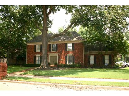 3000 HONEY TREE  Germantown, TN MLS# 9957377