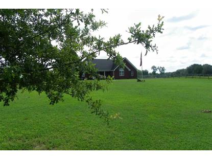 9010 NEW BETHEL  Millington, TN MLS# 9958858