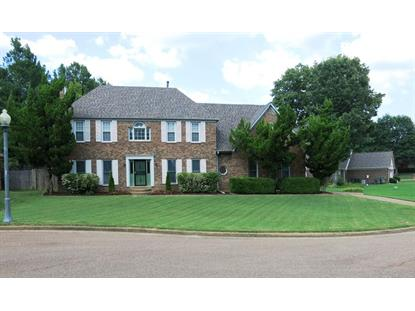 7736 CLOVER RUN  Cordova, TN MLS# 9961409