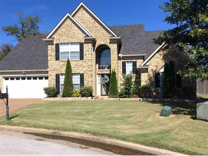 2810 HIDDEN FALLS  Cordova, TN MLS# 9963002
