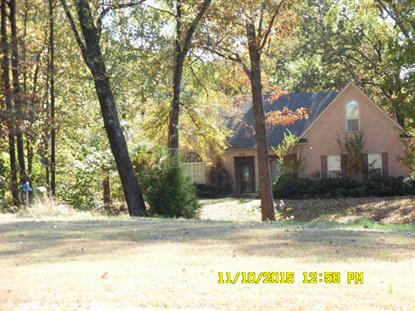 315 VILLAGE PARKWAY  Southaven, MS MLS# 9966639