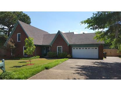 7805 BUCK RIDGE  Cordova, TN MLS# 9976550