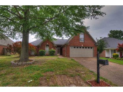 1999 ABBOTT  Cordova, TN MLS# 9977503